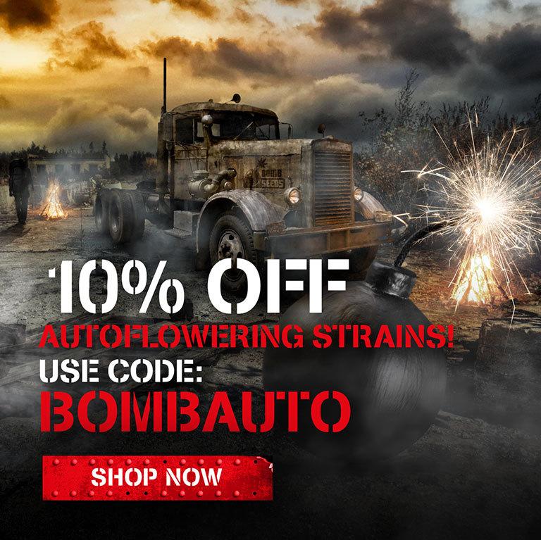 10% off autoflowering strains